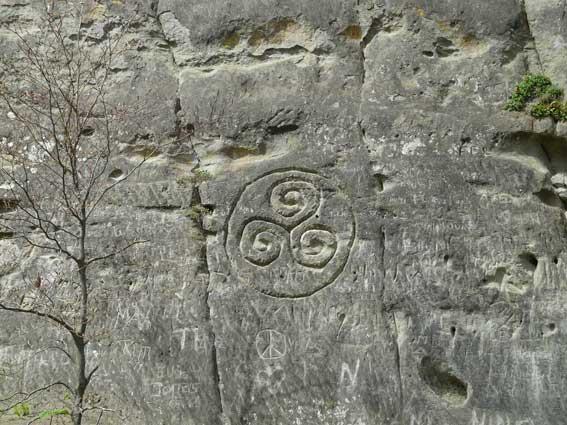 Celtes, Druides